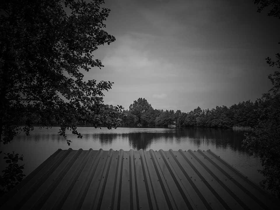 Nuddock Wood Scenic Photos